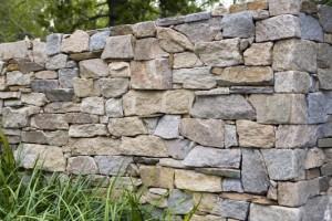 Pioneer wall sample