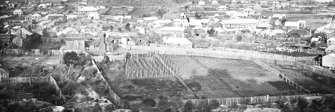 A section of the Panorama of Hill End, showing Germantown and the vines and gardens of the German settlers in the foreground. ON 4 Box 6 No 18591b Digital order no: a2822483 State Library of NSW